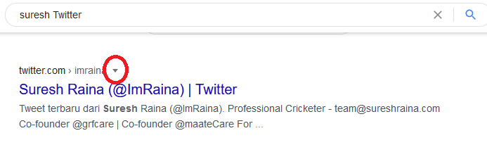 Use Google Cache To Recover Deleted Tweets